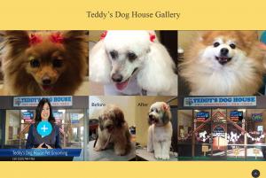 teddys_dog_house