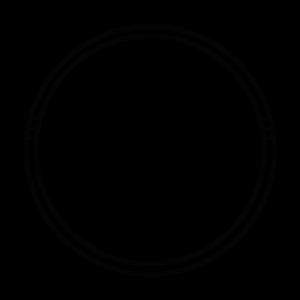 the social circle network logo